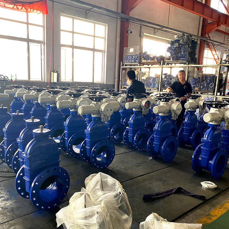 electric actuator gate valve