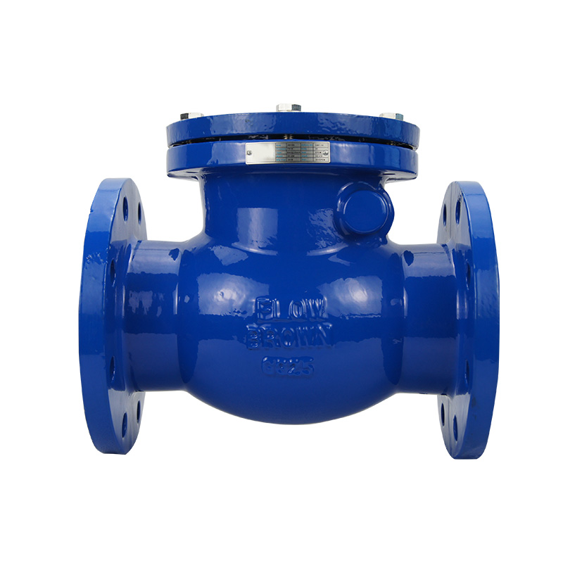 Swing Check Valve (BS5153)