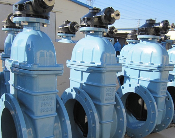 OEM Indian customer dn600-dn1200 cast iron soft seal gate valve is used for water treatment.