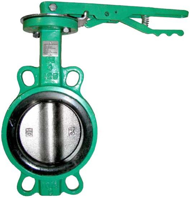 BS Pn16 Dn100 Wafer Type Green Body Butterfly Valve